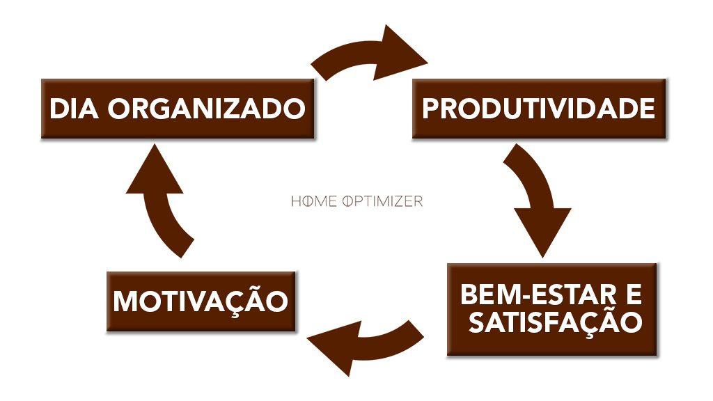 Ciclo de organização e bem-estar