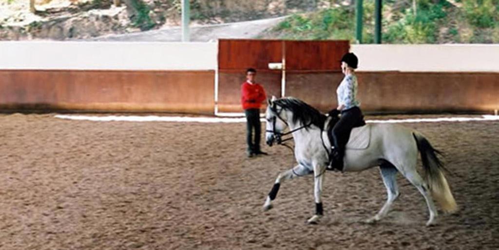 Aula de equitação