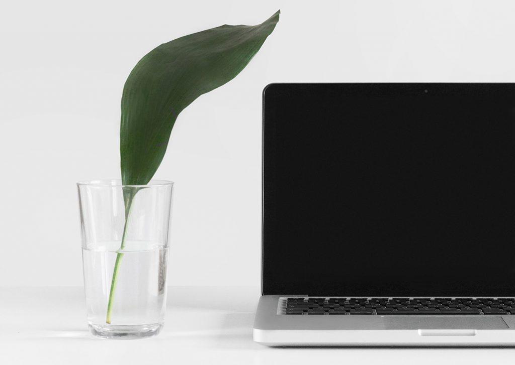 Serviço de Consultoria de Organização Online
